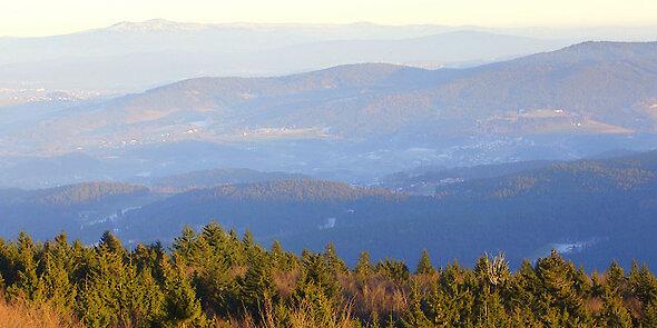 Panoramablick übers Viechtacher Land im Bayerischen Wald