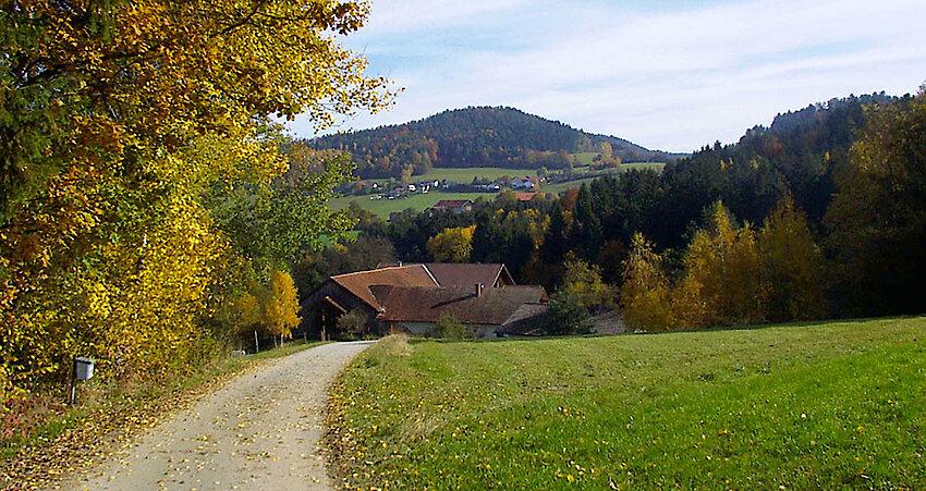 Blick auf die schöne Landschaft des Bayerischen Waldes